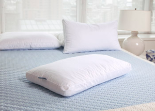Pure Latex Bliss Latex/Down Pillow