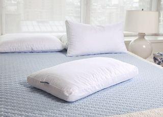 Pure LatexBliss LatexDown Pillow